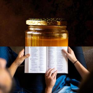 Die Bibel – Ein Genuss